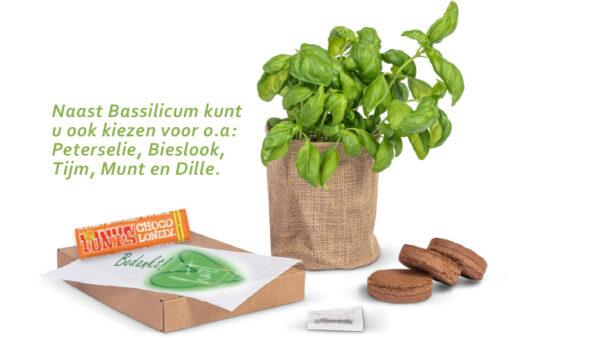 duurzaam thuis groei brievenbuspakket