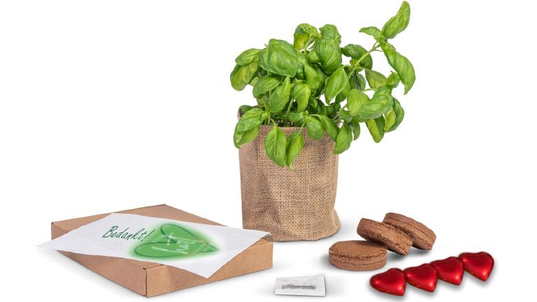 Groei en bloei brievenbuspakket voor de zorg